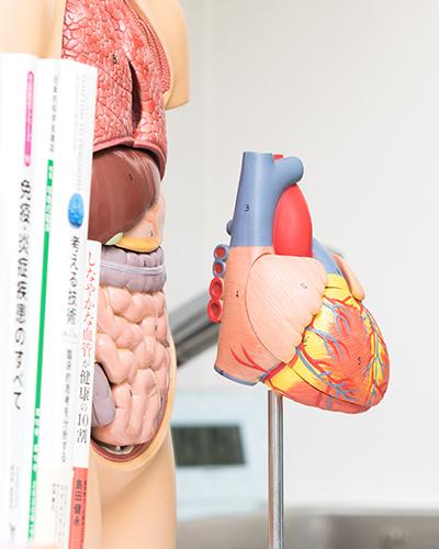 ドブタミン負荷心エコーなど高度な検査を実施
